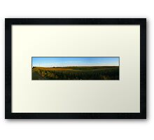 Summer Corn Field Framed Print