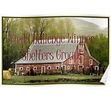 Banner - Shelters - Tied Challenge Winner Poster