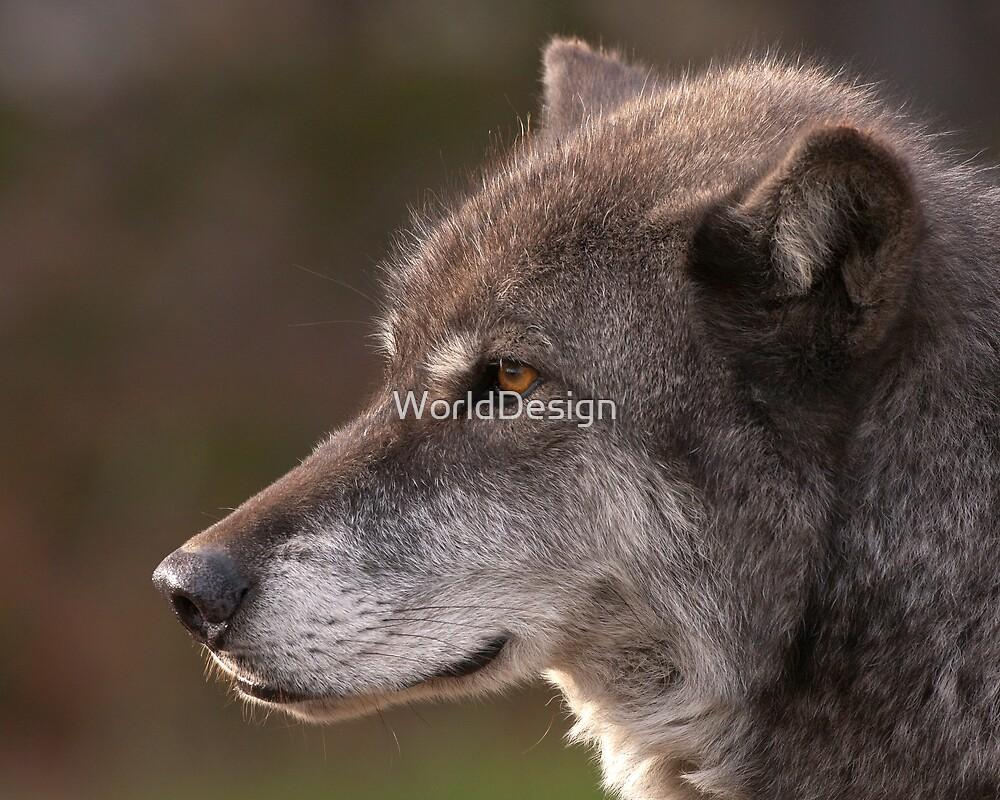 Profile of a Wolf by William C. Gladish, World Design