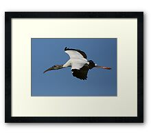 Blue Skies Were Made for Soaring Framed Print
