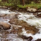 Colorado Stream over Rocks by aweddingtheme