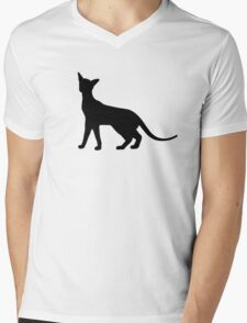Siamese Cat Mens V-Neck T-Shirt
