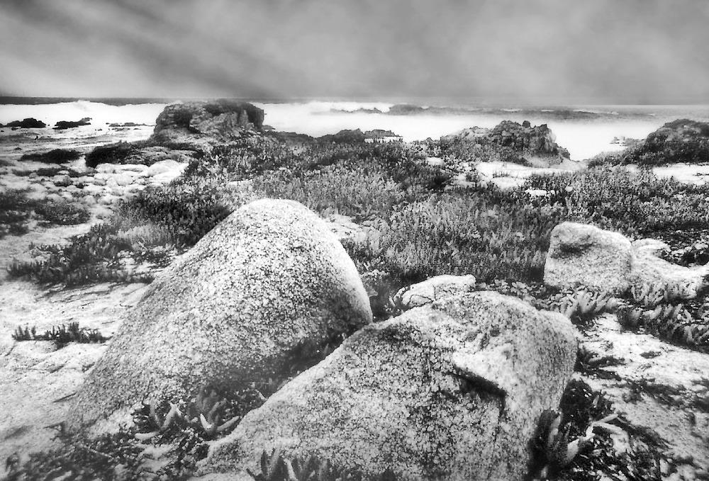 Low Tide by Nadya Johnson