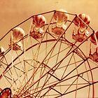 Redscale Ferris Wheel by hazybaby