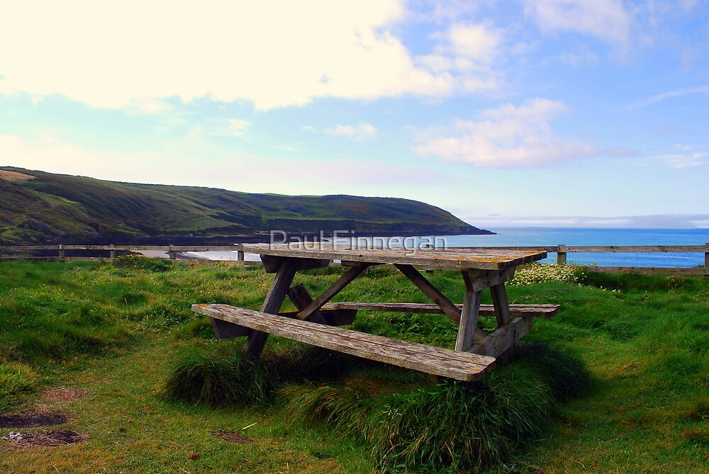 The Picnic Table by Paul Finnegan