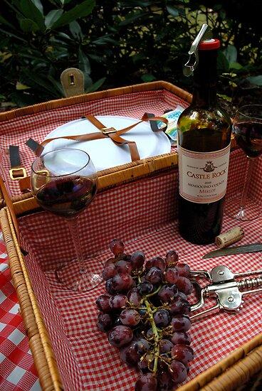 From the Vine to the Bottle by Steve Mezardjian