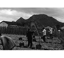 BW China Guilin watering with liquid manure 1970s Photographic Print