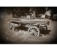 The old cart Photographic Print