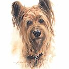 briard dog watercolor by Mike Theuer