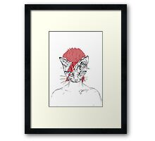 Ziggy_Starcat Framed Print