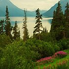 Tutshi Lake In May by Yukondick