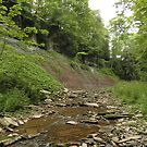 Indian Falls River bed by Heather Crough
