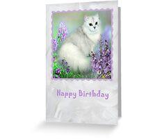 Mistletoe The Silver Shaded Chinchilla Persian Cat Birthday Card Greeting Card