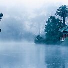 Early morning Fog at Stow Lake by JagiShahani