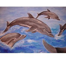 Jumping Dolphins And  Blue Sea Photographic Print
