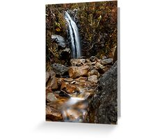 Waterfall Gully Greeting Card