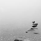 Foggy Sea by Ryan Carter