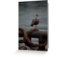 Resting On One Leg Greeting Card