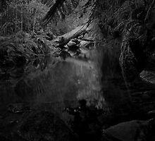 Snug River #33 by Phillip Hirst