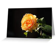 glowing rose, orange Greeting Card