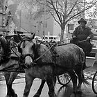 Carriage on Swanston Street by Andrew  Makowiecki