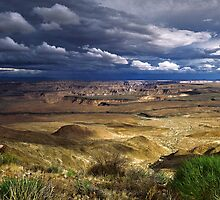 Beauty of the Canyon by Jill Fisher