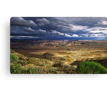 Beauty of the Canyon Canvas Print