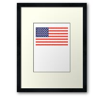 American, Faded Flag, Stars & Stripes, USA, Old Glory, The Star-Spangled Banner, America, Americana, USA Framed Print