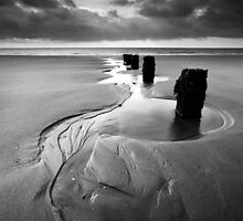 Reach for the Sea BW by Andy Freer