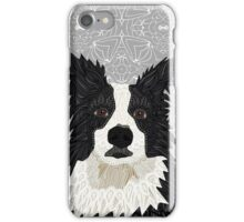 Beautiful Border Collie iPhone Case/Skin