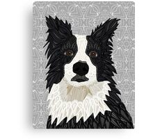 Beautiful Border Collie Canvas Print