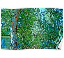 Curtain of Nature Poster