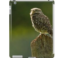 Backlit Little Owl iPad Case/Skin