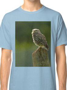 Backlit Little Owl Classic T-Shirt