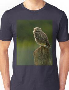 Backlit Little Owl Unisex T-Shirt