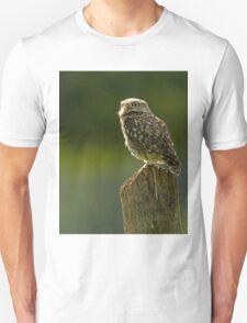 Backlit Little Owl T-Shirt