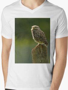 Backlit Little Owl Mens V-Neck T-Shirt