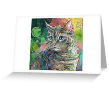 Cat Greeting Card