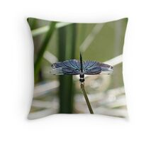 Blue Wing Throw Pillow