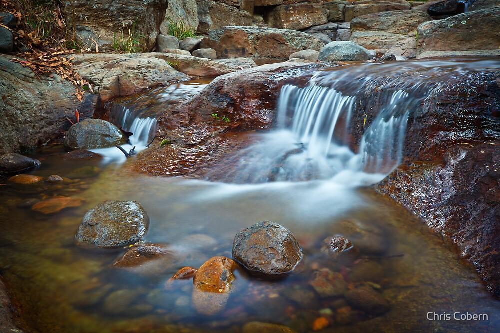 New Town Rivulet #10, Tasmania by Chris Cobern