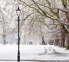 Winter in the Common by Llewellyn Cass