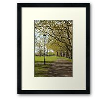 Spring in the Common Framed Print