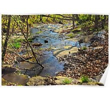 Small Flowing Waters Poster