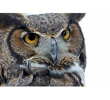 Owl be seeing you Photographic Print