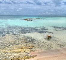 Low tides at Yamacraw Beach in Nassau, The Bahamas by 242Digital