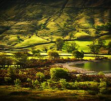 The Beauty of Hills by Svetlana Sewell