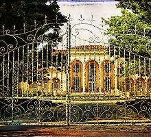 Through the gates by vigor
