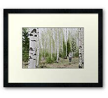 Ecological Framed Print