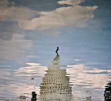 US Capitol reflection by Gustavo Bernal