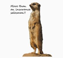 More than an insurance salesman by Jon Lees
